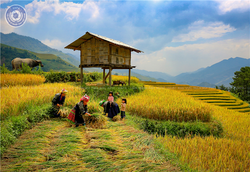 THỜI SỰ 6H SÁNG 4/7/2020: Chủ tịch QH Nguyễn Thị Kim Ngân ký thông qua Chương trình Mục tiêu quốc gia phát triển KT-XH vùng đồng bào dân tộc thiểu số miền núi giai đoạn 2021-2030.