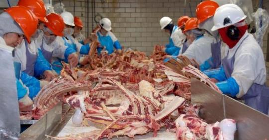 Giới chức bang Iowa ở Mỹ vừa công bố mức phạt đối với Nhà máy chế biến thịt bò cao cấp Iowa ở Tama (25/9/2020)