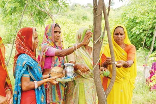 Kỳ lạ ngôi làng ở Ấn Độ: 1 bé gái, 111 cây xanh (7/9/2020)