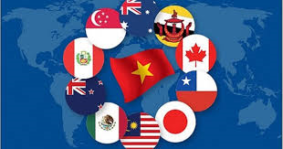 Hợp tác thúc đẩy phát triển nền tài chính ASEAN và vai trò của Bộ Tài chính Việt Nam trong năm nay (25/9/2020)