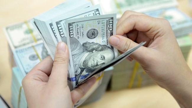 Việt Nam có mức nợ nước ngoài trong tầm kiểm soát (27/1/2021)
