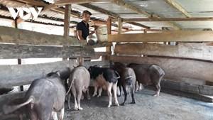 Đảng viên giúp dân thoát nghèo ở huyện miền núi tỉnh Quảng Nam (12/4/2021)