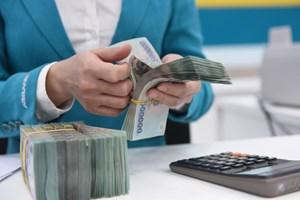 Ngân hàng Nhà nước kiểm soát tín dụng đối với lĩnh vực tiềm ẩn rủi ro (19/4/2021)