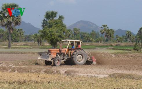 Nhiều địa phương tại khu vực Đồng bằng sông Cửu Long phải đứng trước nguy cơ cháy rừng cấp cực kỳ nguy hiểm. (Thời sự trưa 24/02/2016)