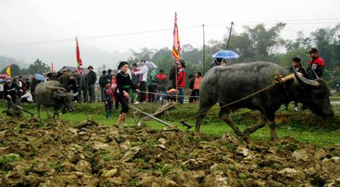 Thời sự đêm ngày 21/02/2015: Nhiều địa phương tổ chức Lễ hội Xuống đồng, cầu cho một năm mưa thuận gió hòa, mùa màng bội thu