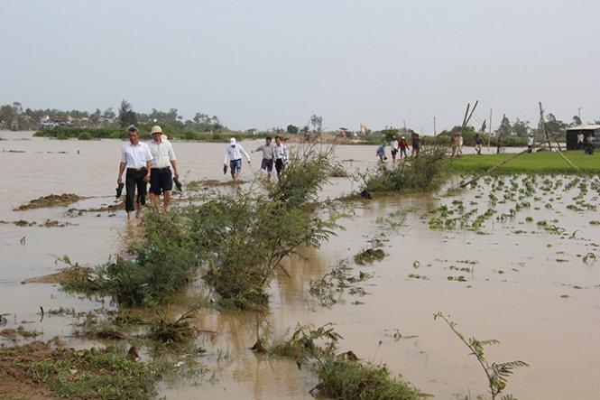 Thời sự đêm ngày 27/3/2015: Nhiều nhà cửa, hoa màu của người dân ở các tỉnh miền Trung bị thiệt hại nặng nề do mưa lũ bất thường giữa mùa khô