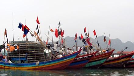 Những kiến thức giúp ngư dân phòng tránh, giảm thiểu tai nạn, rủi ro trên biển. (18/12/2015)