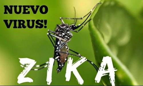 Bộ Y tế và tỉnh Khánh Hòa bác bỏ thông tin Khánh Hòa có 4 bệnh nhân dương tính với virus Zika. (Thời sự chiều 30/3/2016)