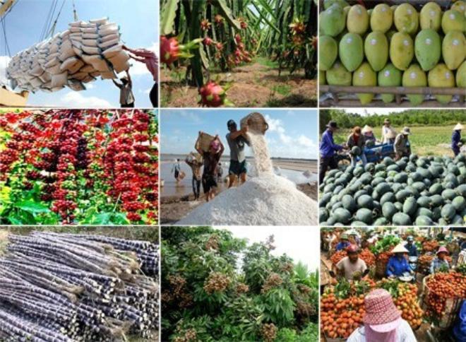Xuất khẩu nông sản và những triển vọng mới (3/3/2018)
