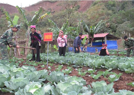 Nông nghiệp và nông thôn ngày 22/12/2014: Bộ đội Biên phòng tăng cường bám bản, bám xã biên giới, giúp dân xóa đói giảm nghèo, bảo vệ vững chắc an ninh biên giới.