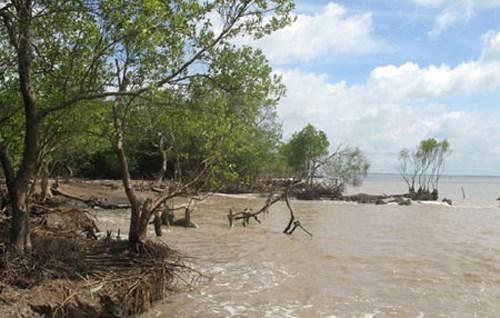 Thời sự sáng ngày 04/12/2014: Biến đổi khí hậu ngày càng ảnh hưởng nghiêm trọng đến đời sống, sản xuất của người dân Đồng bằng sông Cửu Long.