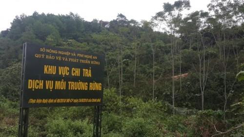 Chi trả dịch vụ môi trường rừng sau 5 năm thực hiện (30/11/2015)