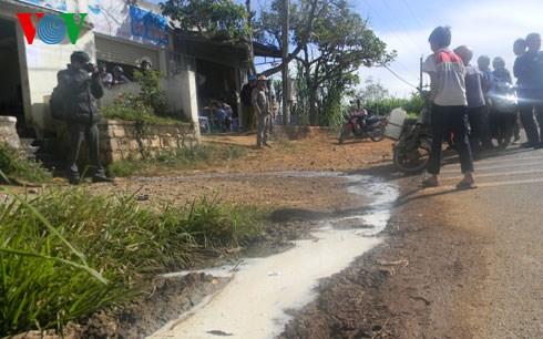Thời sự chiều ngày 10/01/2015: Lâm Đồng: Người dân đổ hàng nghìn lít sữa bò tươi ra đường