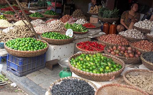 Nông nghiệp và nông thôn ngày 08/01/2015: Cơ hội nào cho nông sản Việt Nam khi hội nhập