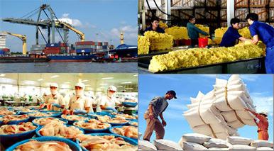 Nông nghiệp và nông thôn ngày 27/4/2015: Xuất khẩu nông sản Việt Nam gặp khó - Gỡ từ đâu.