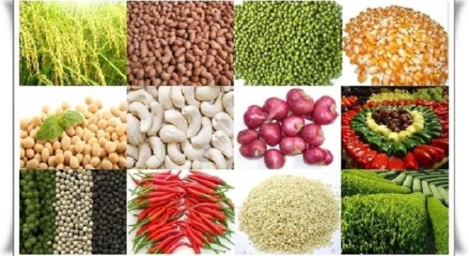 Nâng cao giá trị cho nông sản Việt. (Nông nghiệp và nông thôn ngày 22/6/2015)