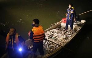 Cá chết hàng loạt tại Hồ Tây, Hà Nội 2 ngày qua (3/10/2016)