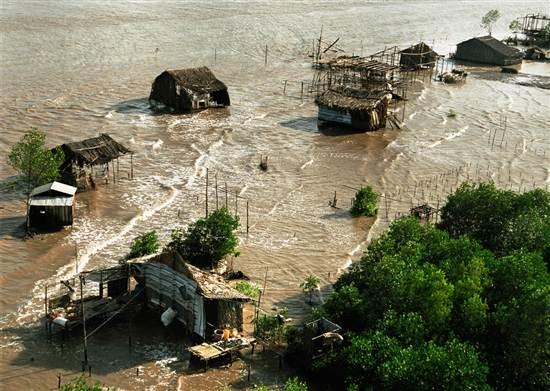 Kiên Giang  nỗ lực phòng chống biến đổi khí hậu (13/11/2016)