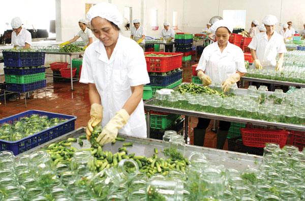 Xây dựng thương hiệu nông sản Việt Nam- Những việc cần làm. (3/5/2016)