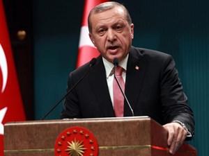 Quan hệ Thổ Nhĩ Kỳ với các đối tác sau đảo chính (29/7/2016)