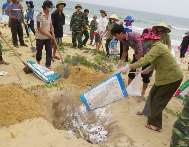 Ngư dân Quảng Bình đề nghị được kiểm tra sức khỏe; đồng thời xác định thời hạn khắc phục môi trường, giải pháp hỗ trợ ngư dân sau vụ cá chết hàng loạt do chất thải độc hại của Formosa (Thời sự trưa 9/7/2016)