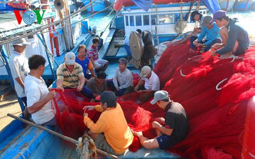 Quảng Ngãi thành lập các tổ đoàn kết đánh bắt trên biển giúp ngư dân an toàn hơn trong mỗi chuyến đánh bắt xa bờ (Thời sự sáng 22/8/2016)
