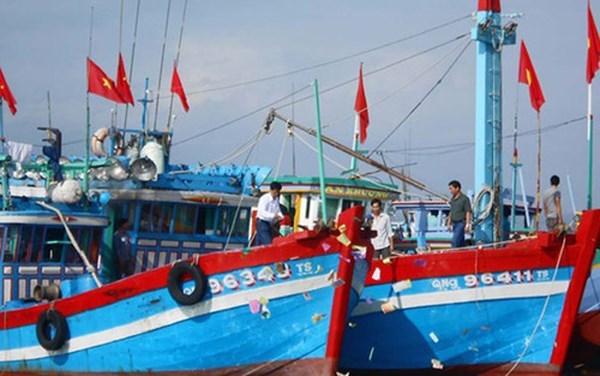 Tỉnh Bình Định sẽ hỗ trợ pháp lý để ngư dân khởi kiện hai đơn vị đóng tàu vỏ thép theo Nghị định 67 (Thời sự sáng 3/4/2018)