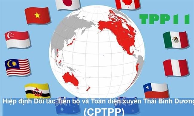 Hiệp định Đối tác Tiến bộ và Toàn diện xuyên Thái Bình Dương (CPTPP): Cơ hội hay thách thức đối với doanh nghiệp Việt Nam (25/5/2018).