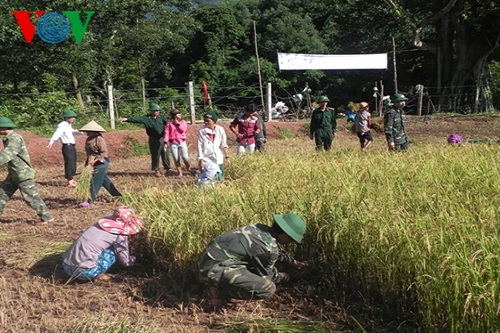 Bộ đội Biên phòng Lai Châu giúp dân phát triển kinh tế (9/6/2018)