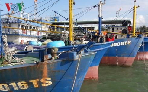 Hàng loạt ngư dân miền Trung sở hữu tàu đánh cá theo Nghị định 67 lâm vào cảnh  nợ nần, không có khả năng trả nợ (18/6/2018)