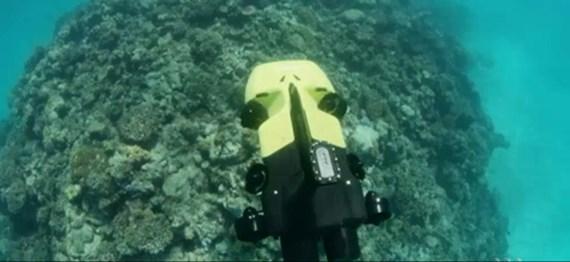 Australia ra mắt robot diệt sao biển nhằm bảo vệ rạn san hô lớn nhất thế giới (4/9/2018)
