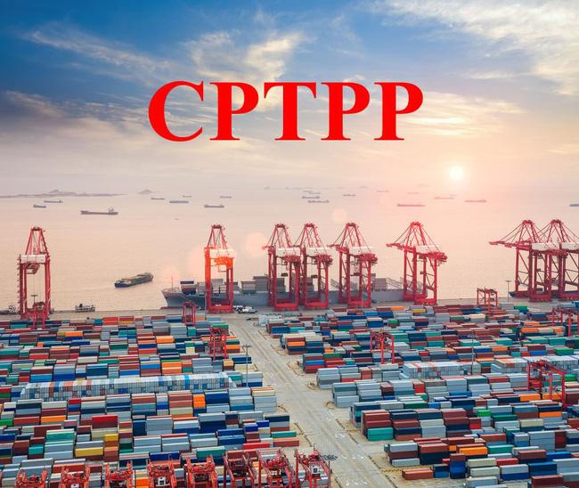 Hội nhập kinh tế quốc tế, cơ hội và thách thức – Thực tế từ Hiệp định CPTPP (30/1/2019)