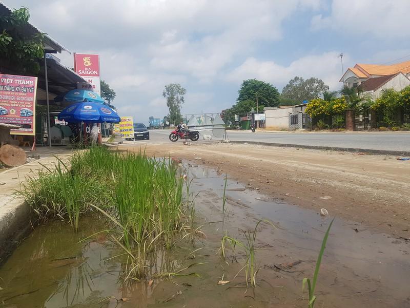 Dự án nâng cấp, mở rộng Quốc lộ 1A qua Quảng Ngãi: Bao giờ hết vướng? (25/10/2019)