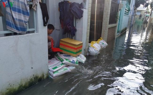 Giảm ngập úng tại thành phố Hồ Chí Minh: Cần cả giải pháp trước mắt và lâu dài (16/10/2019)