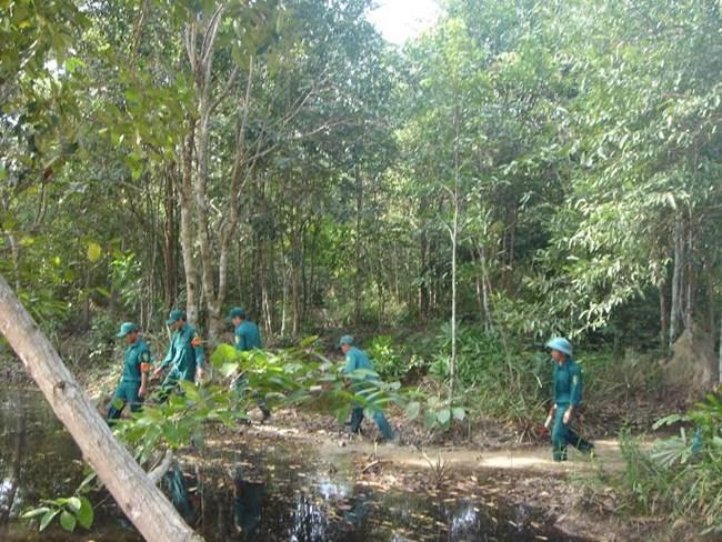 Tây Ninh chủ động phòng chống cháy rừng mùa khô 2018-2019 (20/2/2019)
