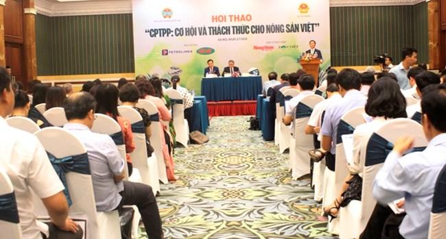 Sân chơi CPTPP và thách thức với nông sản Việt (6/7/2019)