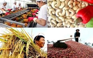 Tăng xuất khẩu nông sản chính ngạch để nâng giá trị gia tăng (9/7/2019)