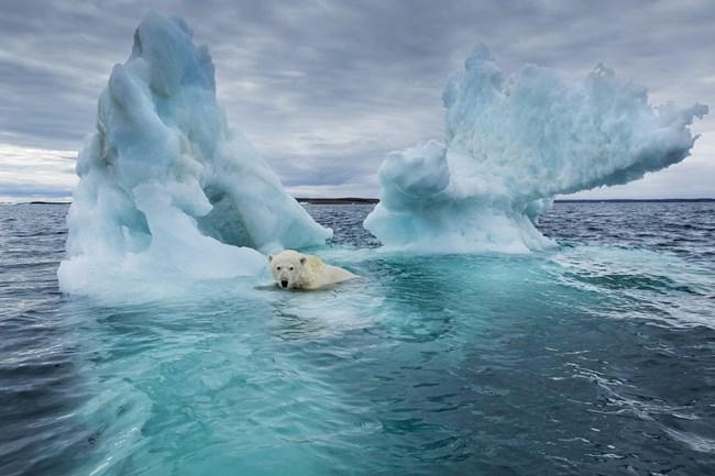 Báo động tình trạng nóng lên toàn cầu, khi mực nước biển tăng nhanh, đạt mức cao nhất trong vòng 30 năm qua (13/8/2019)