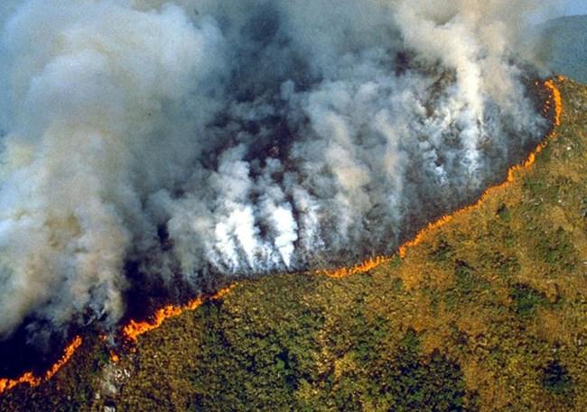 Cháy rừng Amazon: Tác động và bài học xử lý khủng hoảng toàn cầu (27/8/2019)