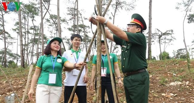 Tết trồng cây gắn với công tác quản lý, phát triển rừng (30/1/2020)
