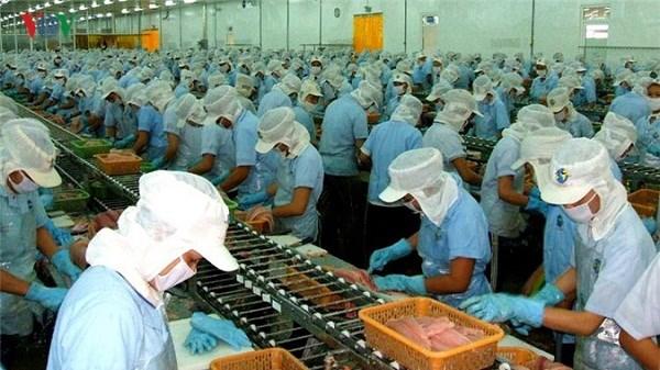 Giải pháp gỡ thẻ vàng của EC đối với hải sản Việt Nam (09/10/2020)