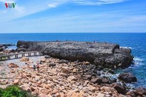 Đến với Ninh Thuận khám phá hang Rái ở vịnh Vĩnh Hy (21/2/2020)