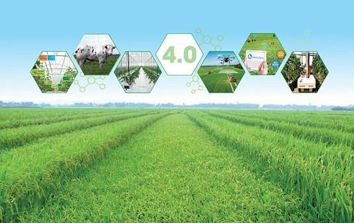 Nông dân Việt với giấc mơ trên những cánh đồng 4.0 (6/3/2020)