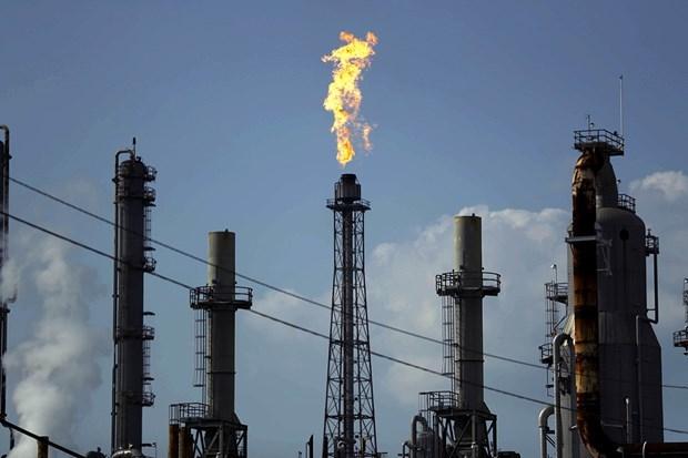 OPEC cắt giảm sản lượng nhằm ổn định thị trường dầu mỏ (13/4/2020)