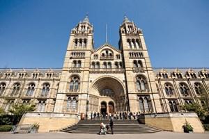 Bảo tàng Lịch sử tự nhiên London sẵn sàng mở cửa trở lại sau thời gian dài tạm ngưng (28/7/2020)