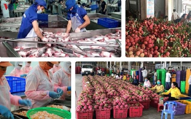 EVFTA: Cơ hội và thách thức cho nông sản Việt (3/8/2020)