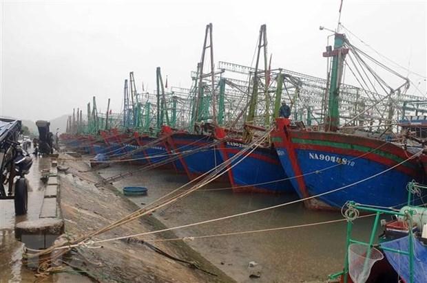 THỜI SỰ 21H30 ĐÊM 13/10/2021: Đêm nay, bão số 8 giật cấp 12 vào các tỉnh Bắc Trung Bộ, gây mưa lớn tại các tỉnh từ Thanh Hóa đến Quảng Trị