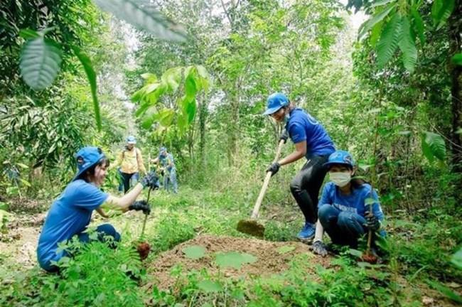 Vì sao gần 3 triệu ha rừng vẫn chưa có chủ? (06/10/2021)
