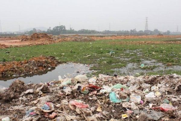 Thái Nguyên: Đất vàng bị bỏ hoang – Lãng phí, ô nhiễm môi trường (31/03/2021)