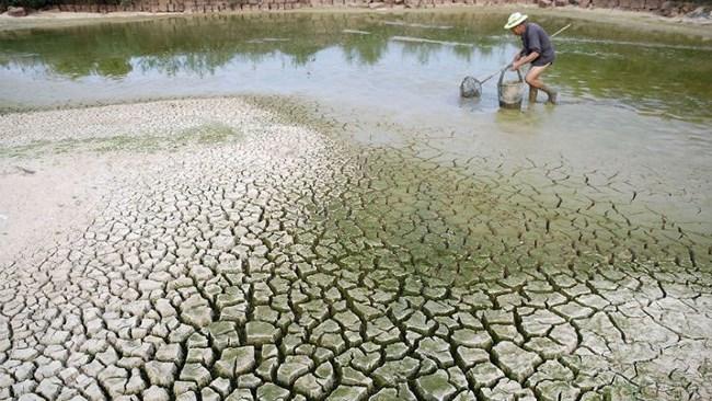 Đồng bộ các giải pháp ứng phó biến đổi khí hậu (10/03/2021)